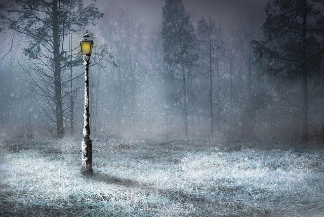 Oświetlenie zewnętrzne – na co zwrócić uwagę, szukając lamp do ogrodu?