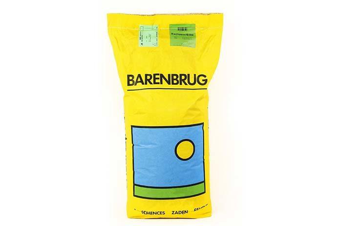 Trawa Barenbrug – czyli jak kupić nasiona na trawnik wysokiej jakości