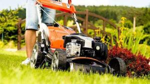 Jak dbać o trawnik i kosiarkę przez cały rok